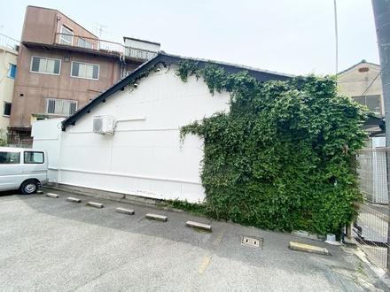 壁面緑化計画4年目♫